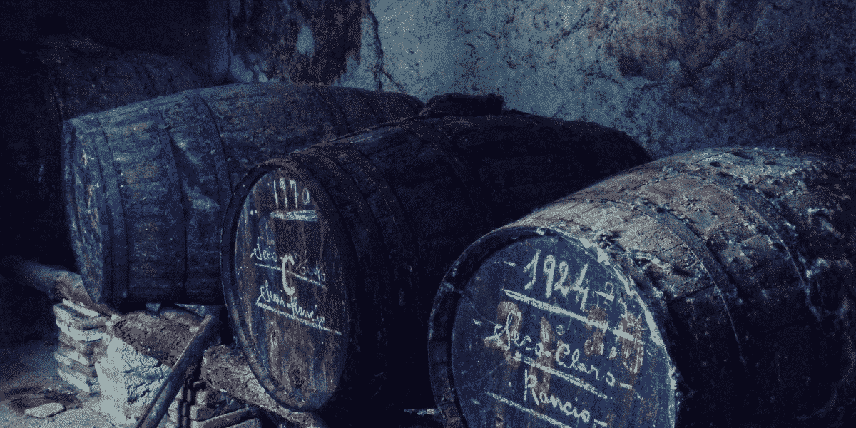 Aging of Wines: Everything You Wanted to Know About 1