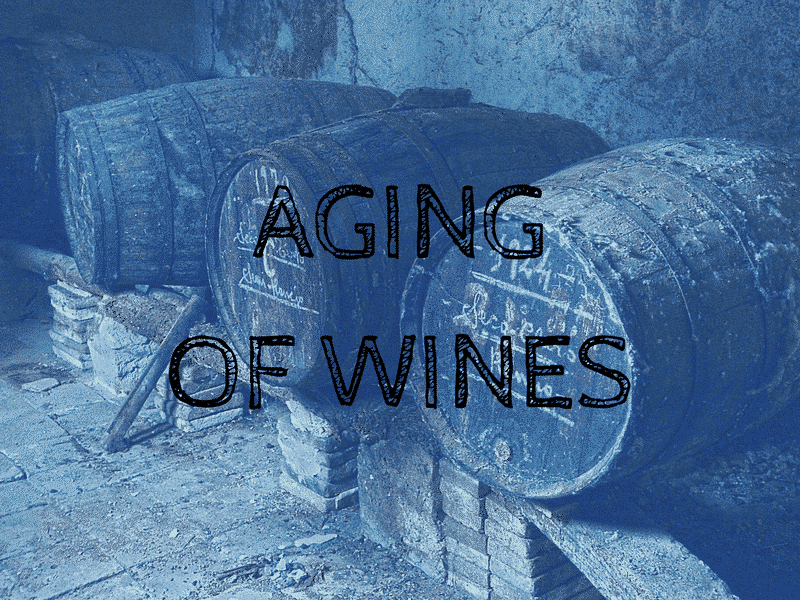 Aging of Wines: Everything You Wanted to Know About