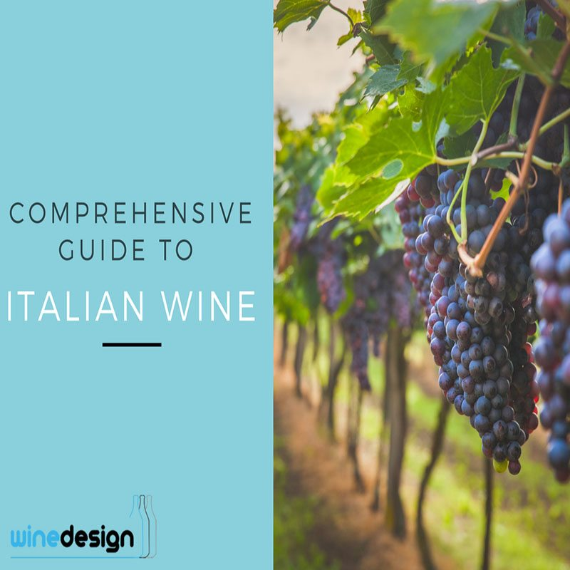 Comprehensive Guide to italian wine labelling, wine design, wedding wine, wine label