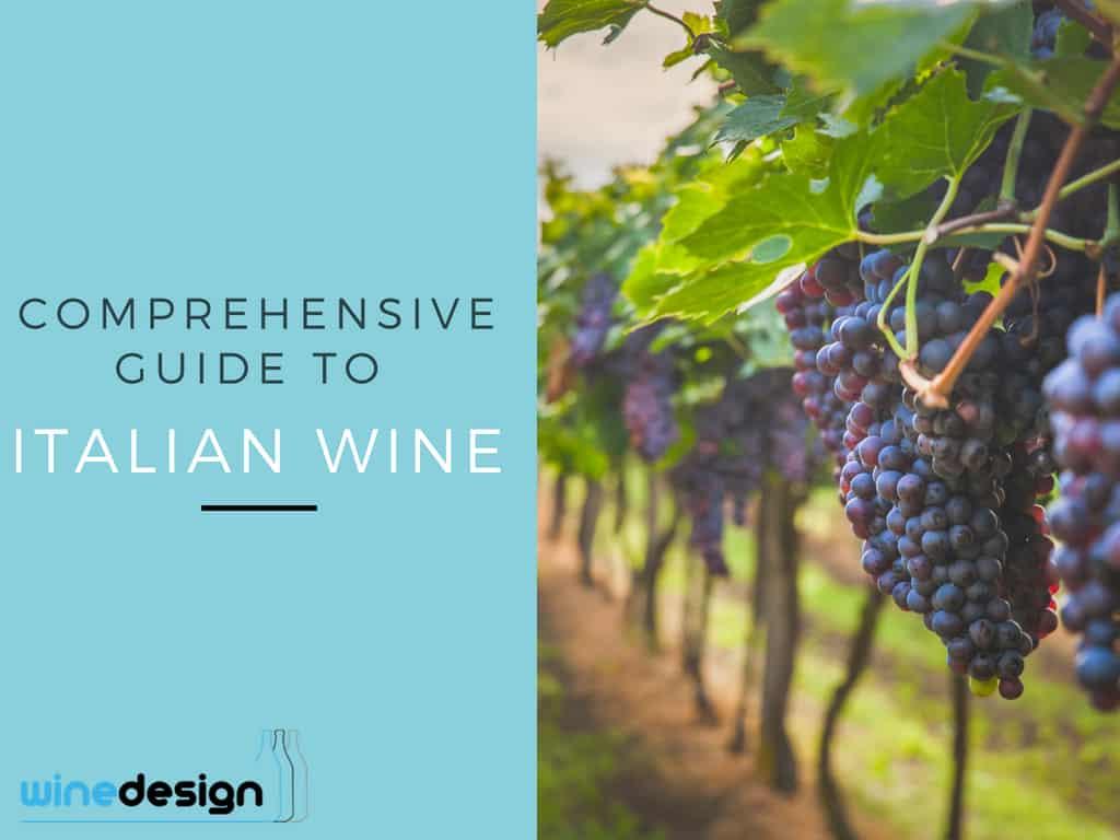Comprehensive Guide to italian wine