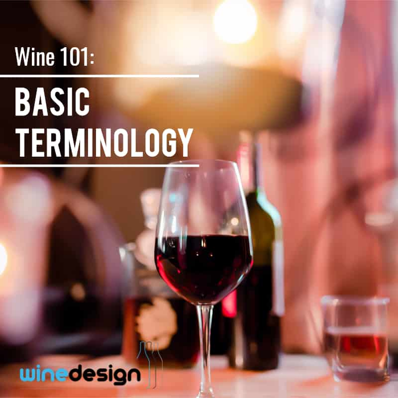 Wine 101: Basic Terminology