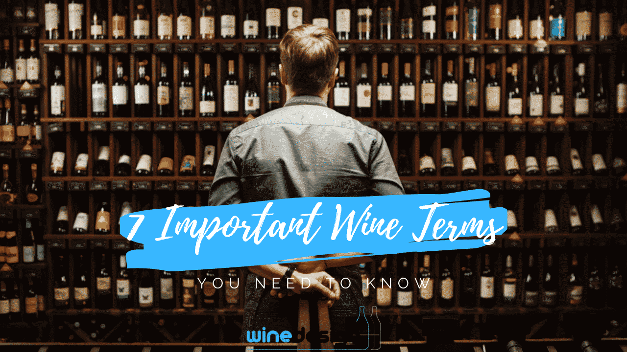 7 Important Wine Terms You Need To Know -
