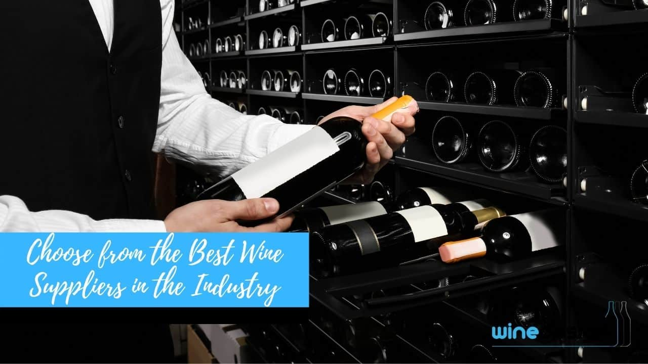 Choose from the Best Wine Suppliers in the Industry
